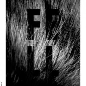 06.04.2013 - AUSSTELLUNG & KONZERT: Fell (Live) | Amadeus Waltenspühl | Schwarzmaler